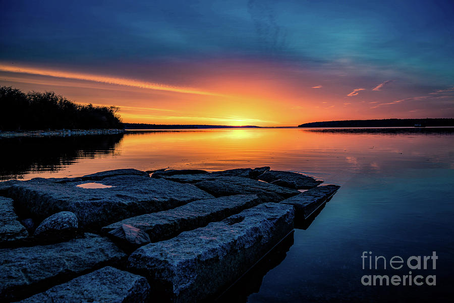 The Glow by Susan Garver