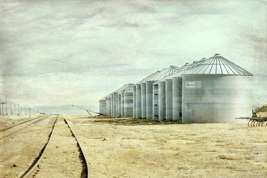 The Grain Bins at Taber by Ramona Murdock