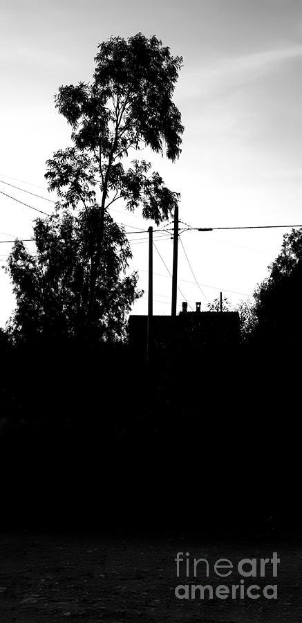 Old House Photograph - The Grandma House  by Paola Baroni