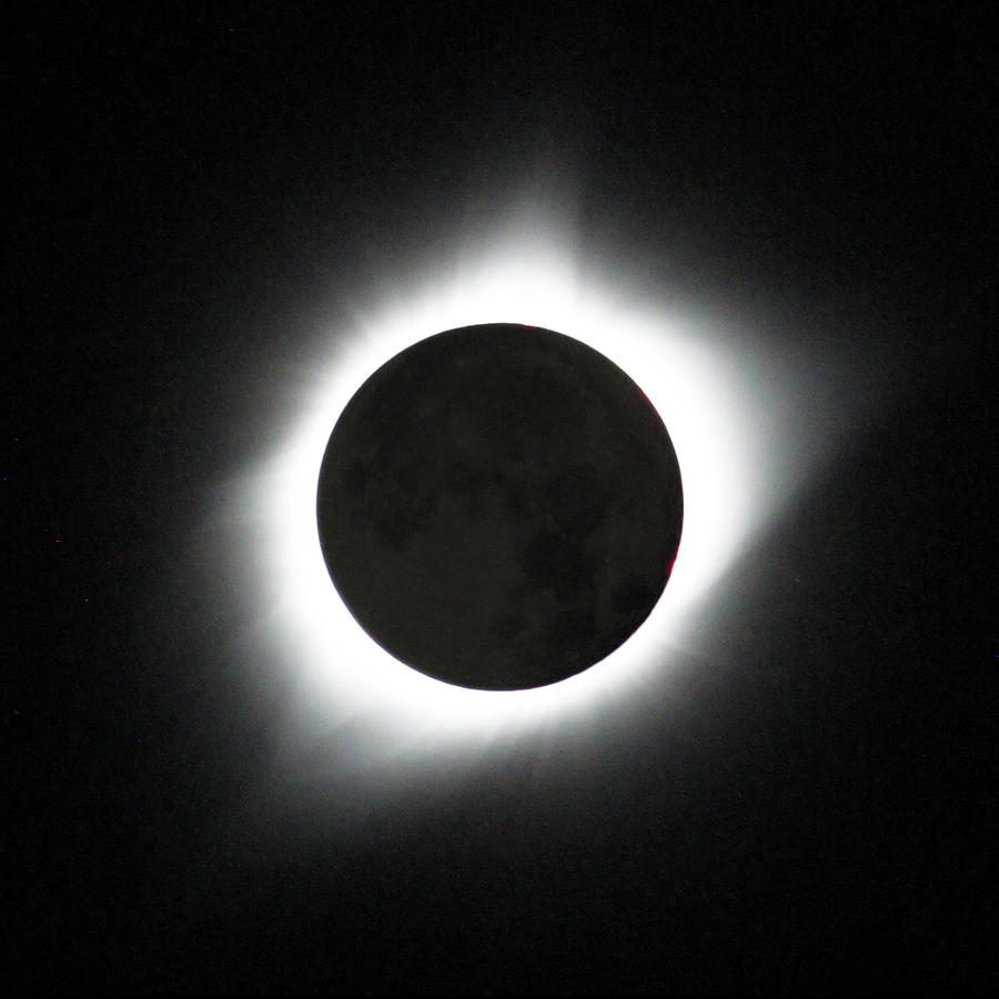 Solar Eclipse Photograph - The great American Eclipse by Nunzio Mannino