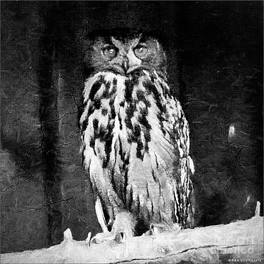 A Great Horned Owl Bw Digital Art