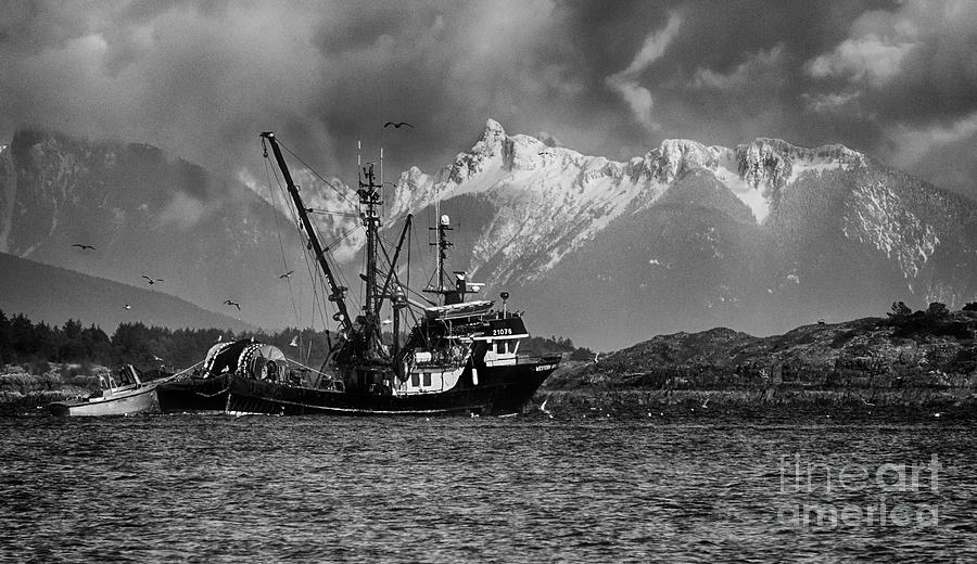 Black And White Photograph - The Great White North Strong And Free by Bob Christopher