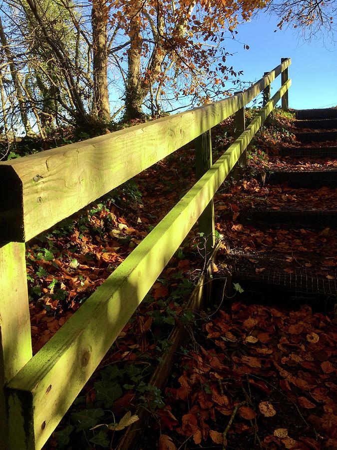 The Green Handrail Photograph