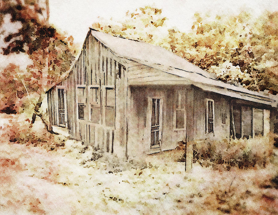 The Home Place by Dennis Buckman