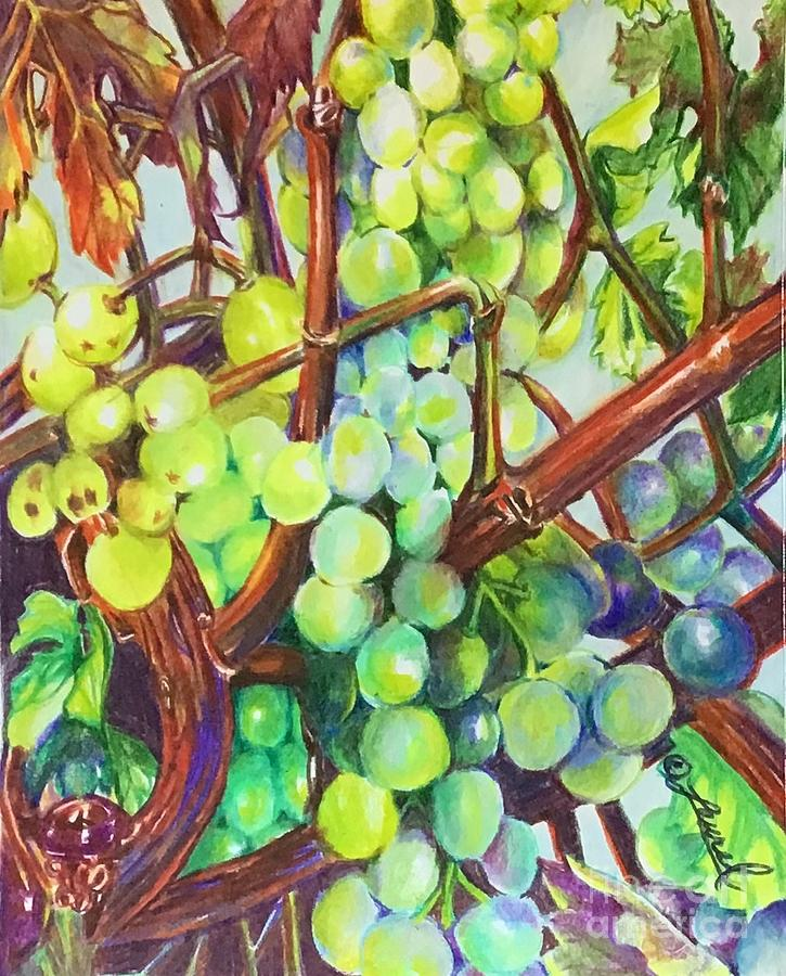 THE HUMBLE GRAPE by Laurel Adams