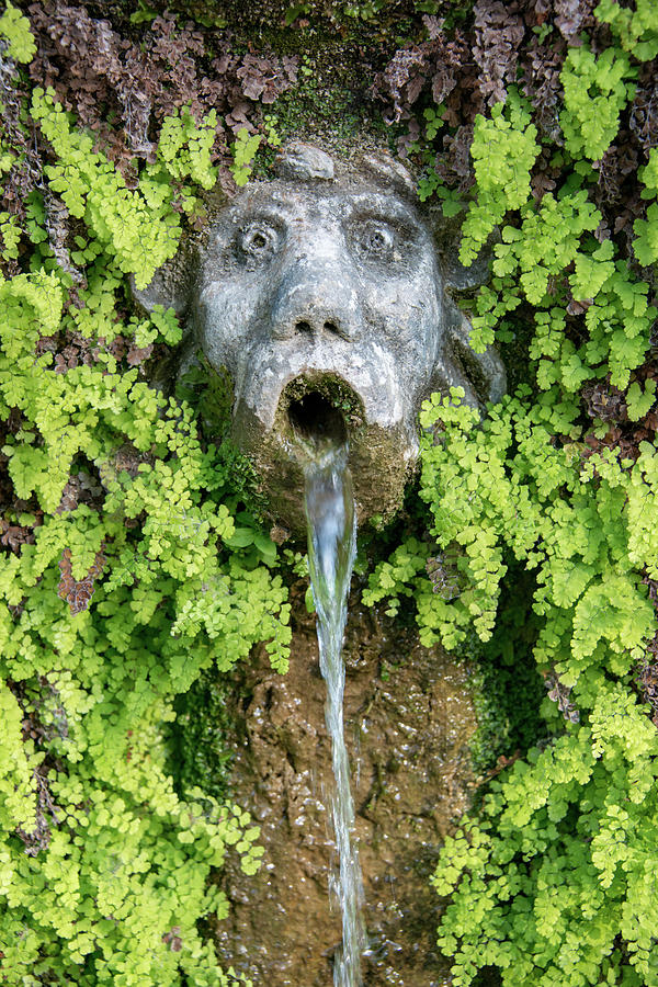 Fountains Photograph - The Hundred Fountains by Joseph Yarbrough