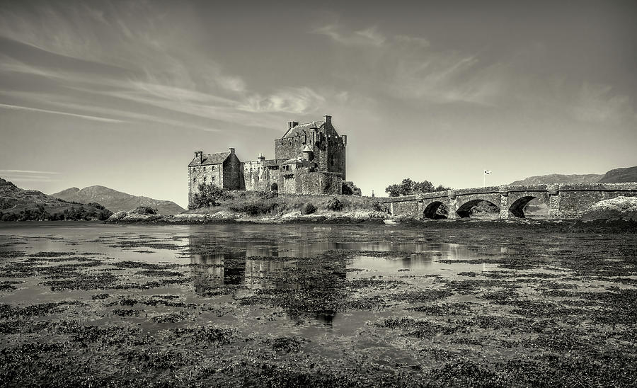 Castle Photograph - The Island Castle by Roy McPeak