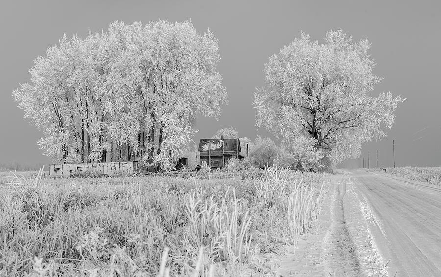 Hoar Frost Photograph - The Junkyard 2018-1 by Thomas Young