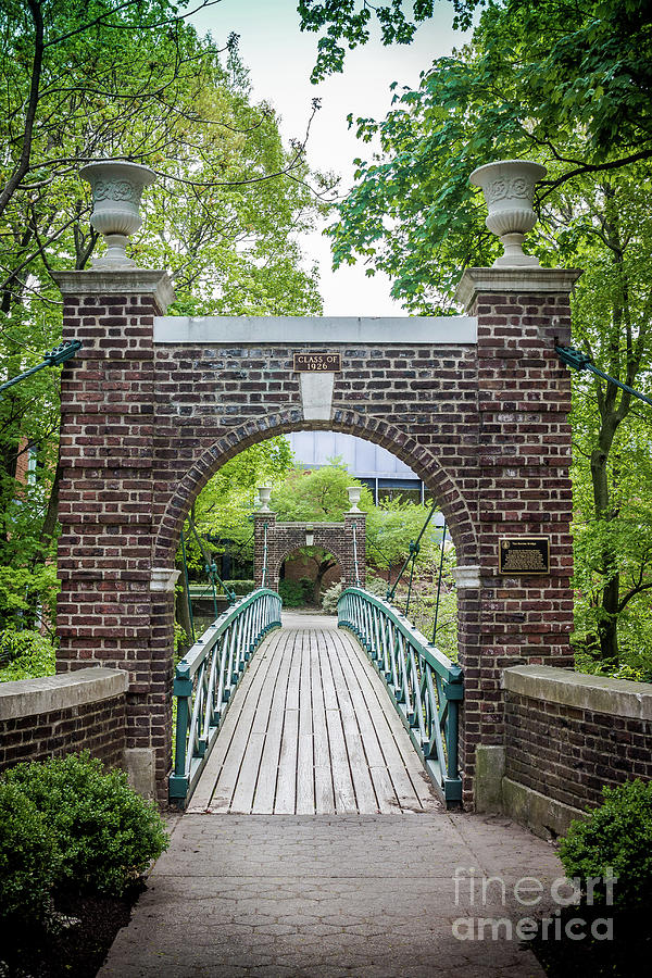 The Kissing Bridge by Colleen Kammerer