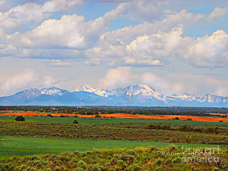 The La Sals seen from the Dove Creek area by Annie Gibbons