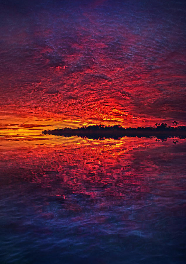 Life Photograph - The Last Chapter by Phil Koch