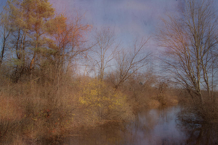 The Last Fall Photo  by Betty Pauwels