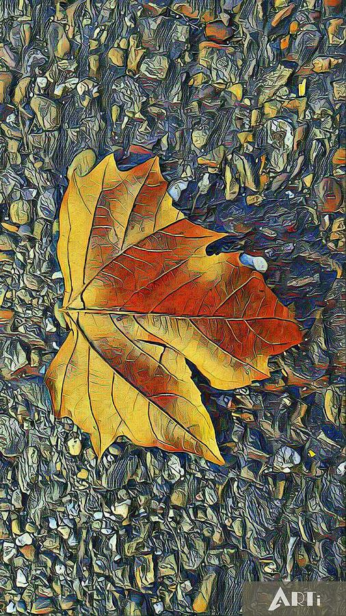 The leaf by Steven Wills