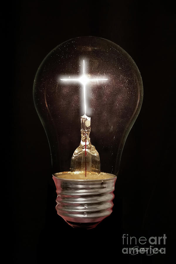The Light Of Life by Curtis Sikes