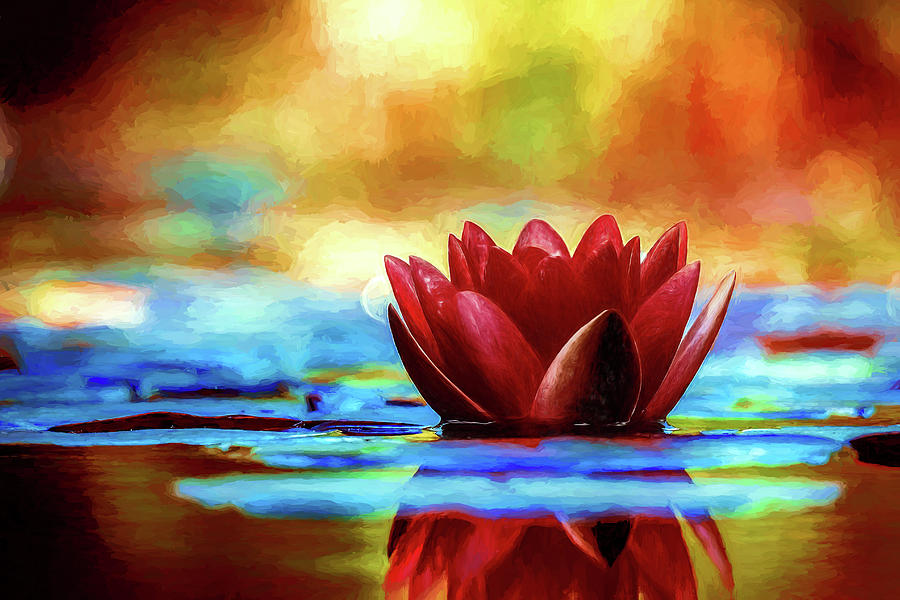 Lily Painting - The Lily by Sean Duffy