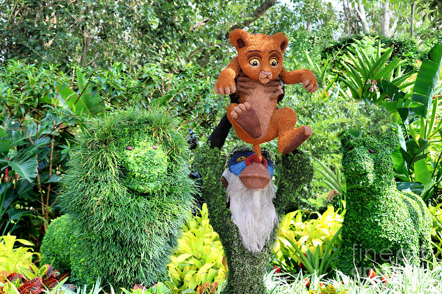 The Lion King Family Topiary Photograph