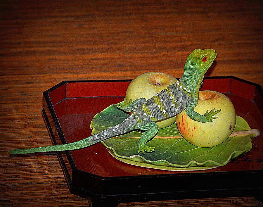 The Lizard's Apples by Kimberly-Ann Talbert
