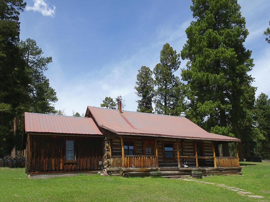 Walt Longmire Photograph - The Longmire Cabin by Gordon Beck