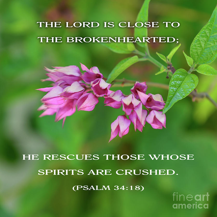 The Lord Is Close To The Brokenhearted by Olga Hamilton