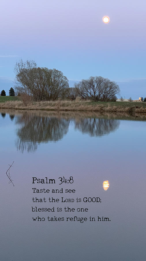 Blessed Photograph - The Lord is Good by April Beaver