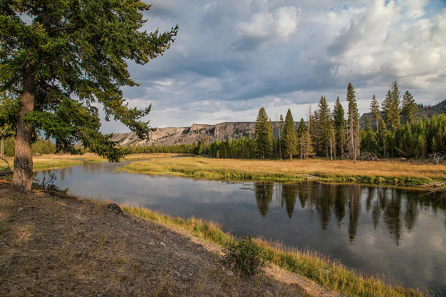 The Madison River at West Yellowstone by Lon Dittrick