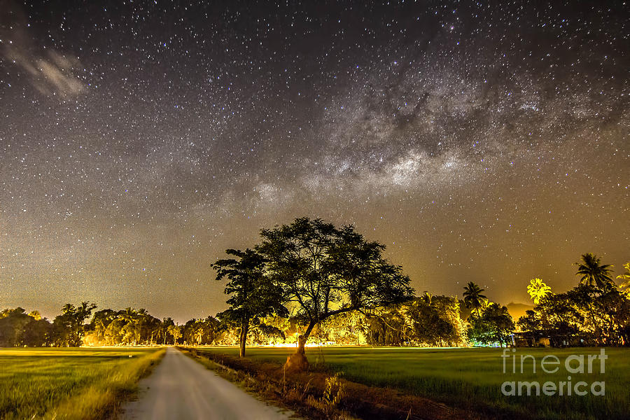 Milkyway Photograph - The Milky Way And The Tree Stand Alone by A.aizat