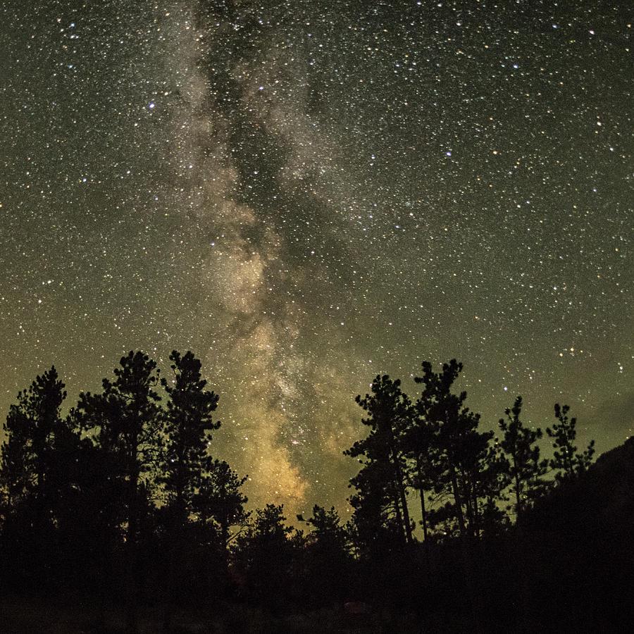 The Milky Way by Jennifer Grossnickle