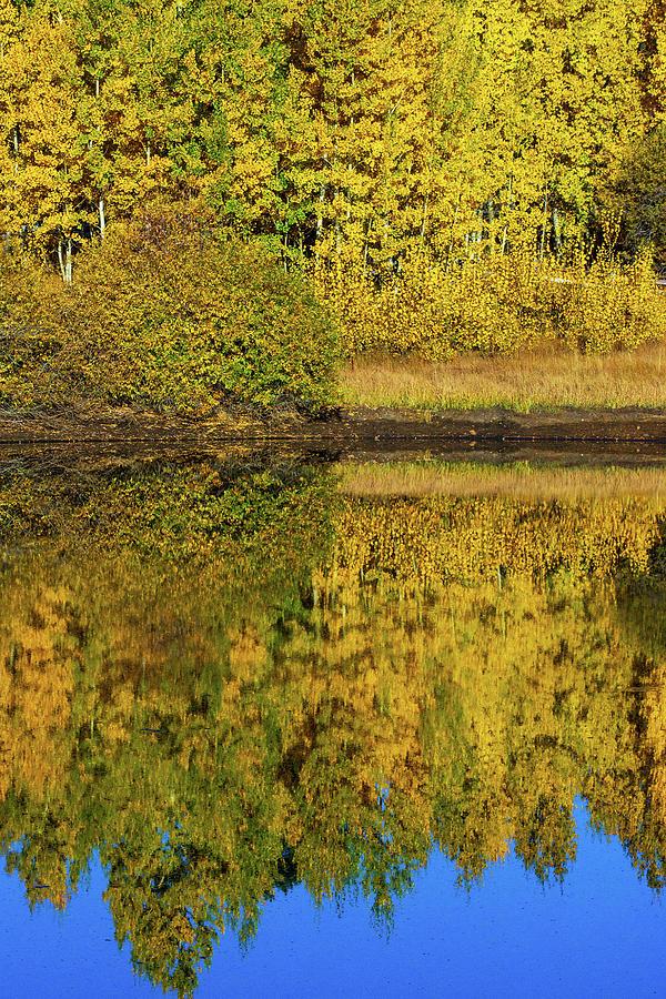 The Mirror of Autumn by John De Bord