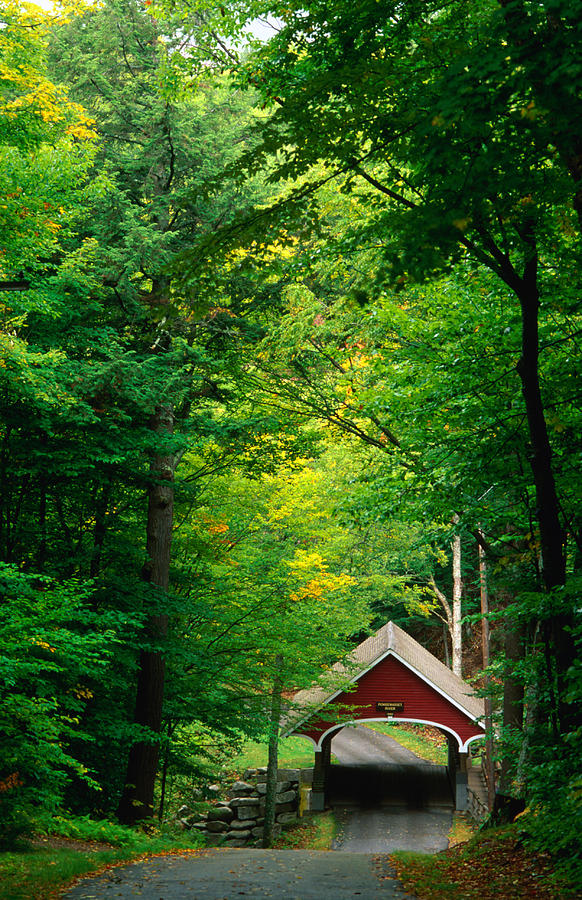 The New Hampshire Covered Bridge 39 Photograph by Mark Newman