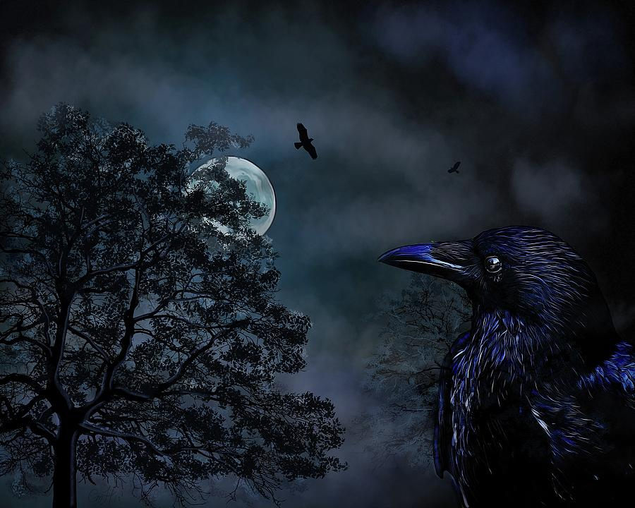 Crow Painting - The Night Crow Sees  by Christina M Hale