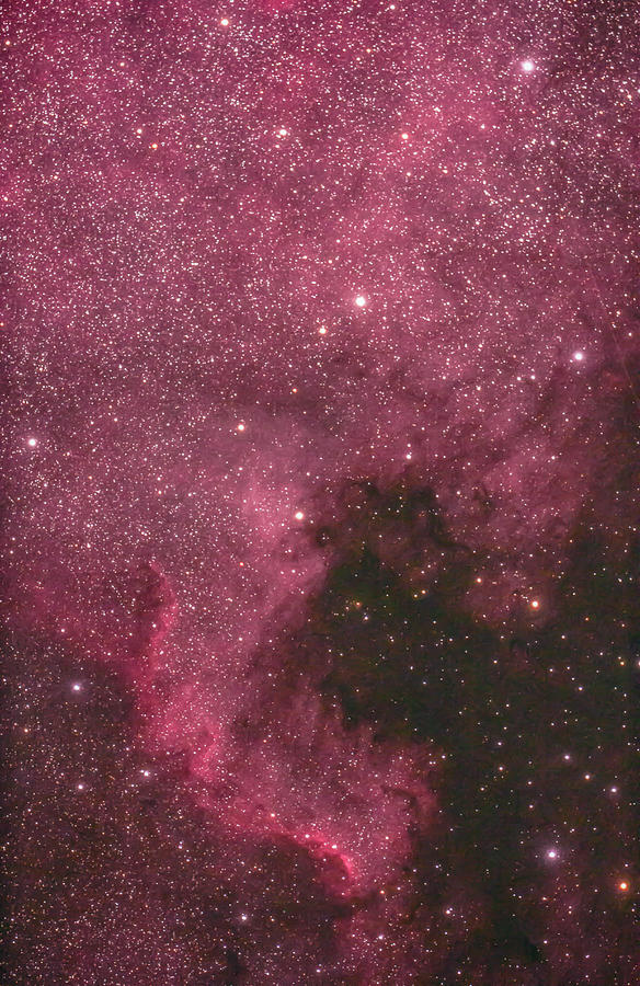The North American Nebula Photograph