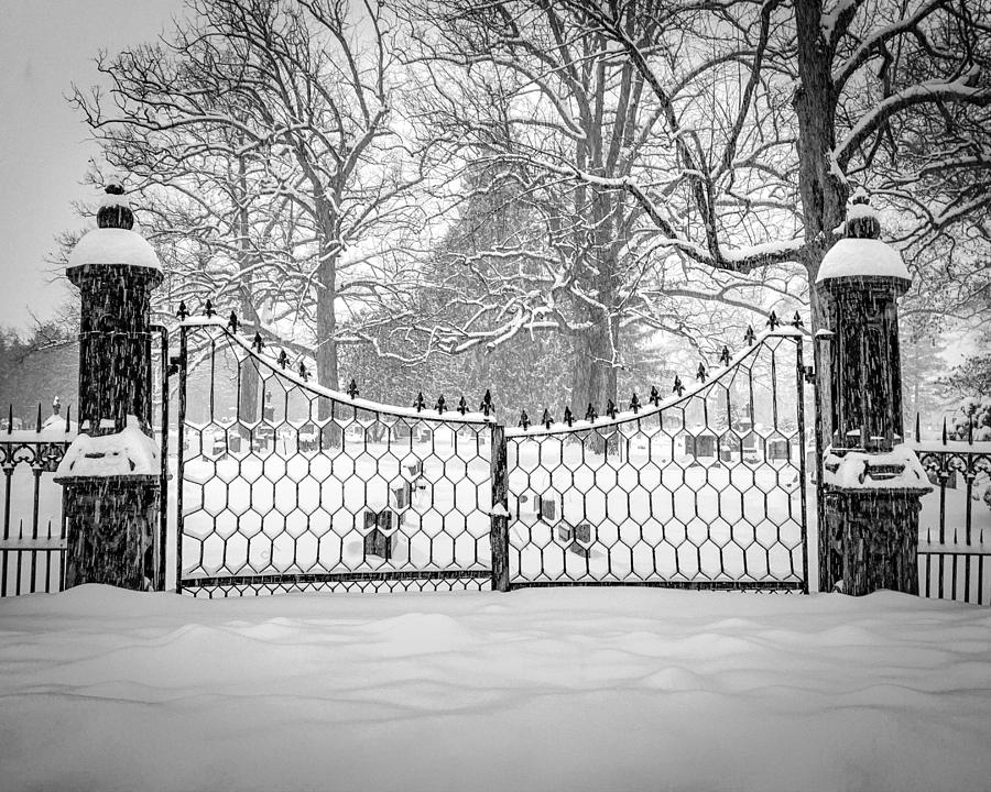 the north gates by Kendall McKernon