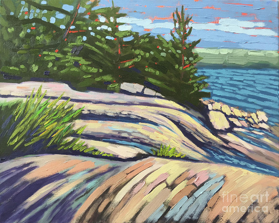 The North Shore by Shelley Newman