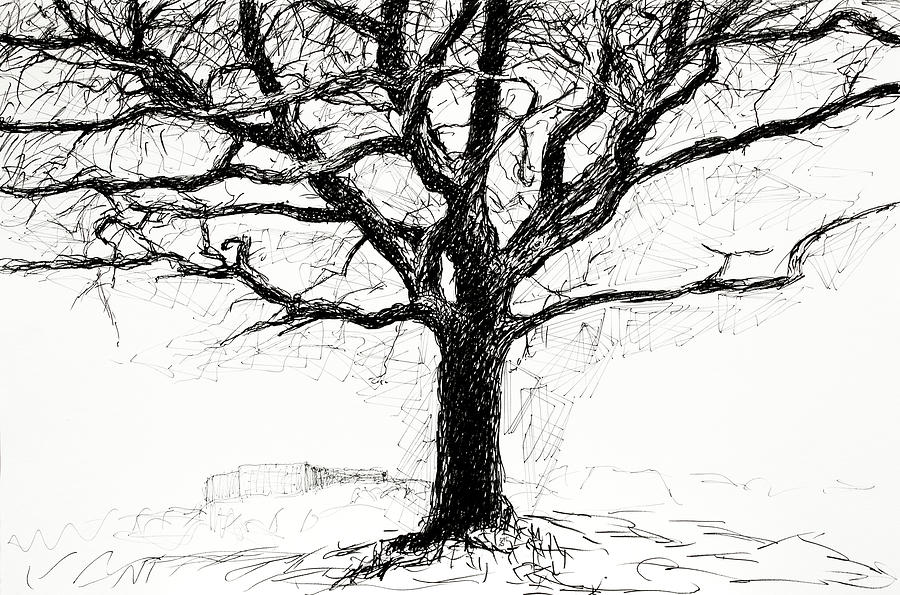 The Oak and the Bunker by Hans Egil Saele