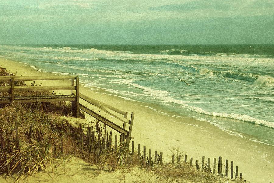The Ocean Sings by Angie Tirado