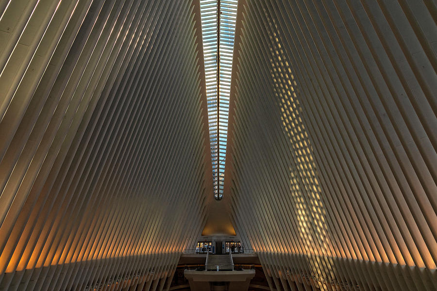 The Oculus In Morning Light by Angelo Marcialis