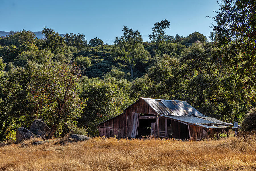 The Old Barn by Peter Tellone