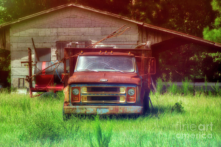 The Old Chevy Pickup by Kathy Baccari