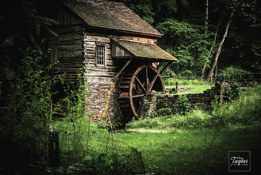 The Old Mill by Pamela Taylor
