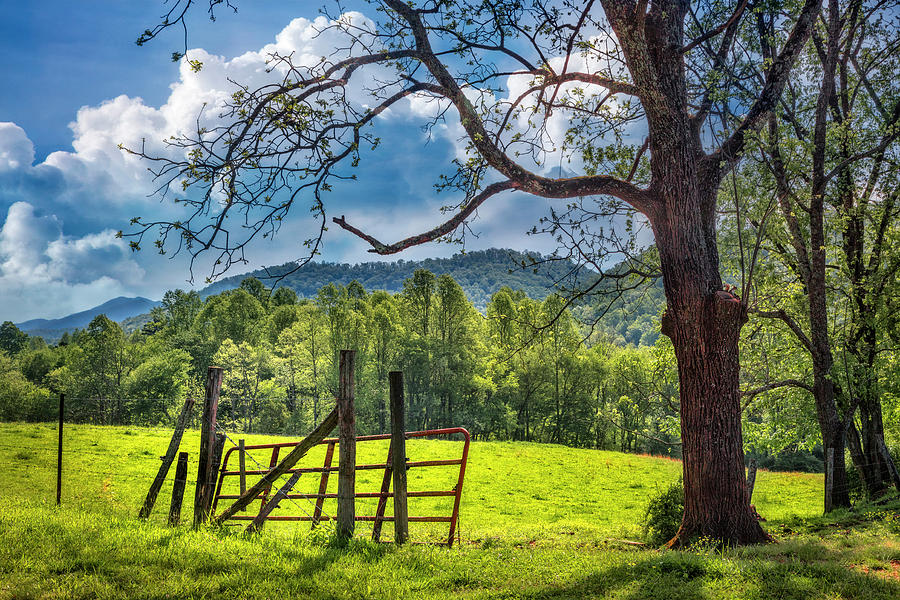 Appalachia Photograph - The Old Red Gate by Debra and Dave Vanderlaan
