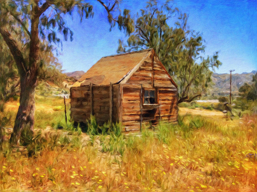 The Old Shack by Snake Jagger