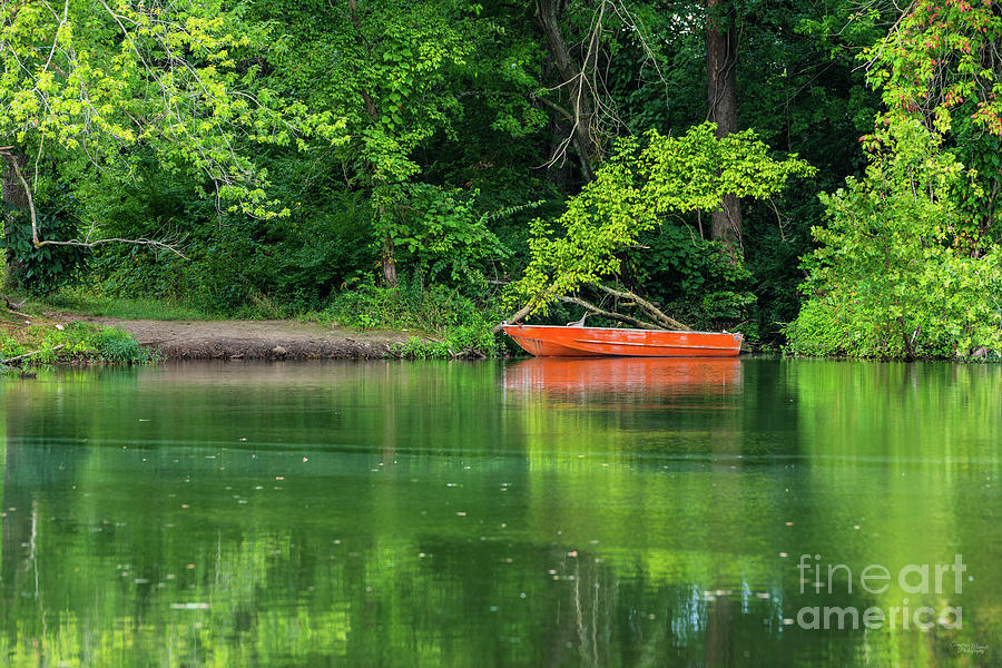 The Orange Boat by Jennifer White