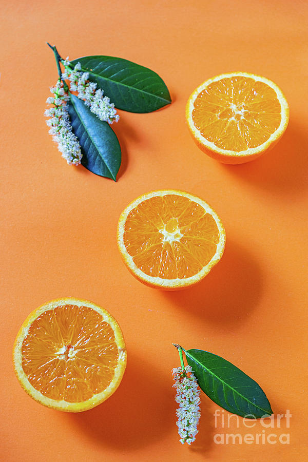 The oranges halves on orange background by Marina Usmanskaya