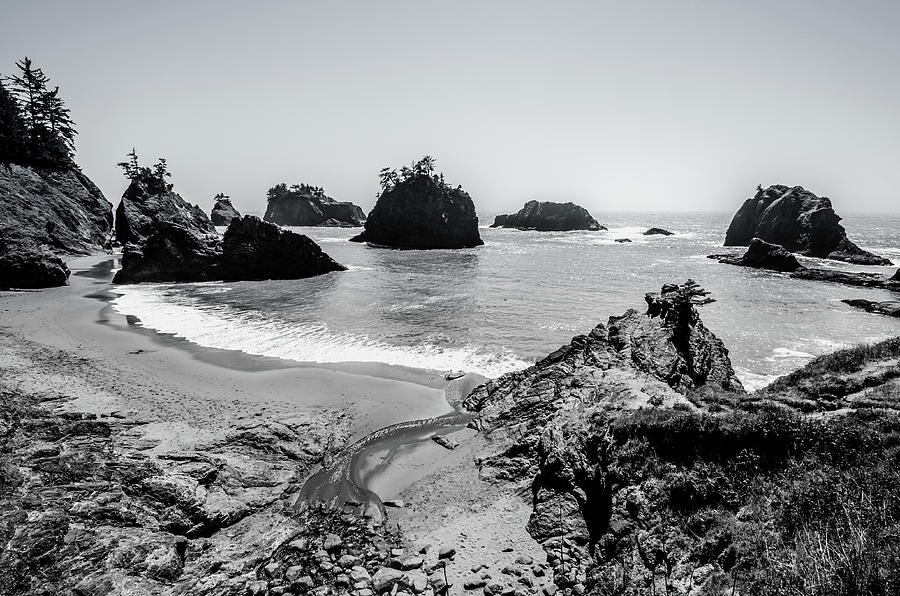 The Oregon Coast in Black and White by Margaret Pitcher