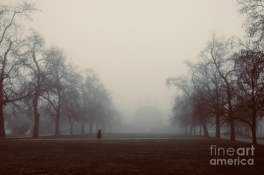 The Palace on a Misty Morning by Rachel Morrison