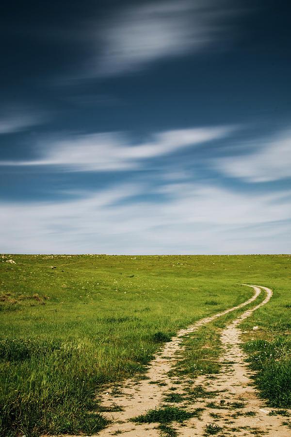 The path to a greener future by Mati Krimerman