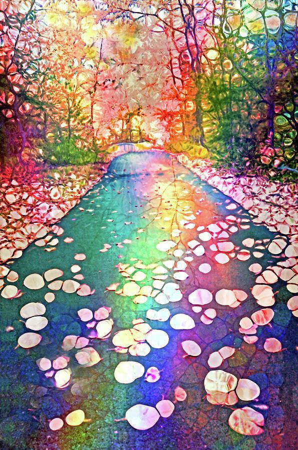 Forest Digital Art - The Path Where Rainbows Meet by Tara Turner