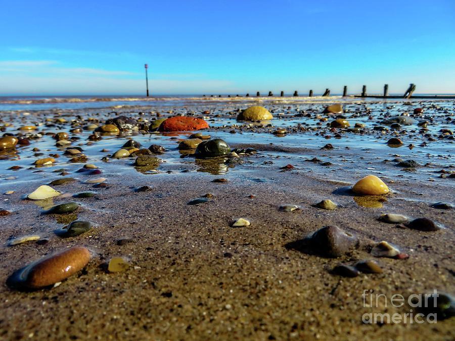 The Pebbled Beach by Mandi Hibberd