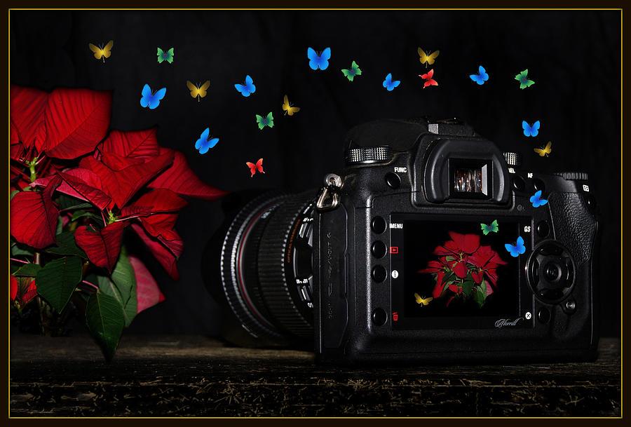 The Photographers Lens Digital Art