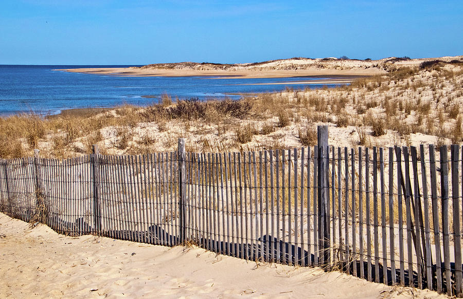 The Point at Cape Henlopen by Carolyn Derstine